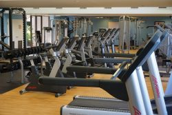Sports Academy Training - CMA Gym - www.ClubMedAcademies.com